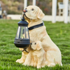 Dog LED Light Dog  1