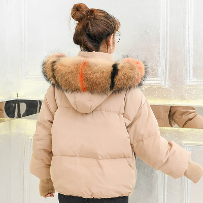 Korean Fashion Natural Raccoon Fur Collar Winter Duck Down Jacket Women Short Loose Coats Warm Parka Casaco Feminino