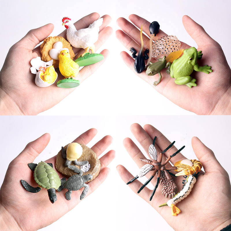 Simulation Terrestrial Marine Forest Poultry Animal Model Toy Mini Animal  Tiger Chicken Duck Cow Poultry PVC Figures Dolls Toy