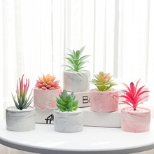 Succulents Lovely Artificial Plants with Pot Simulation Mini Bonsai Potted Placed Green Fake Plants Table Decoration high quality 50 pcs monkey tail cactus bonsai succulents rare varieties beautiful balcony potted plants