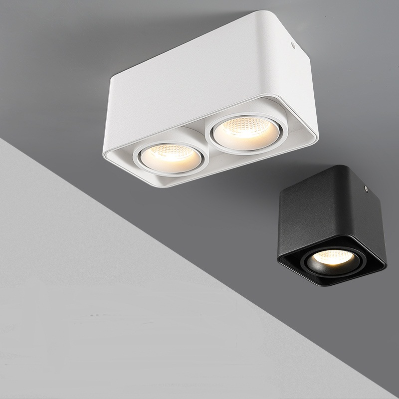 Dimmable <font><b>LED</b></font> <font><b>Downlight</b></font> 10W 12W 15W 20W 24W <font><b>30W</b></font> COB Spot light Single/Double Head Ceiling Lamp Surface Mounted Down light image