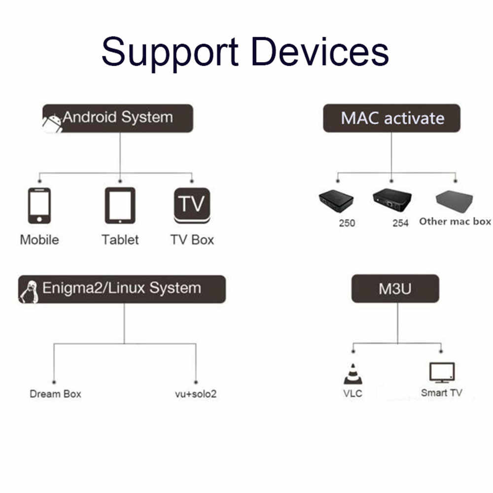 1 an Smart IPTV Abonnement IPTV espagne M3u Code Premium Local espagnol TV en direct DAZN Movistar pour VLC Android Box TV récepteurs