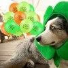 St. Patrick's Day Party Decortions Irish Day Green Clover Banner Balloon Saint Patricks Irish Day Funny Photo Props Decor Supply 6
