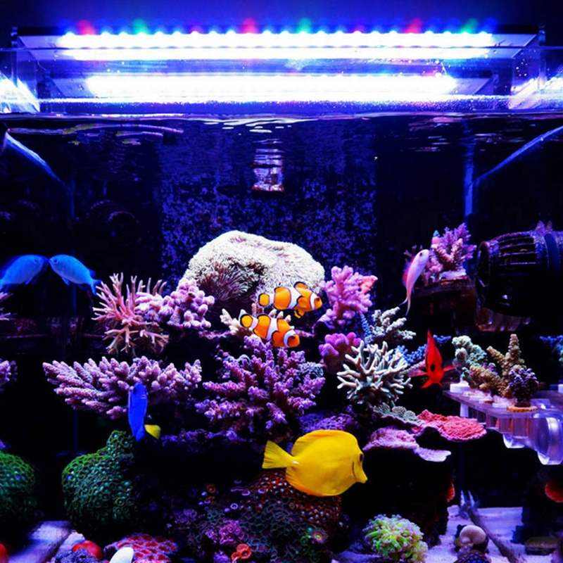 30W 50CM lumière LED d'aquarium pour 50-60CM réservoir 54SMD 2200LM 5 couleurs LED Aquarium aquatique réservoir de poisson lampe lampe corail