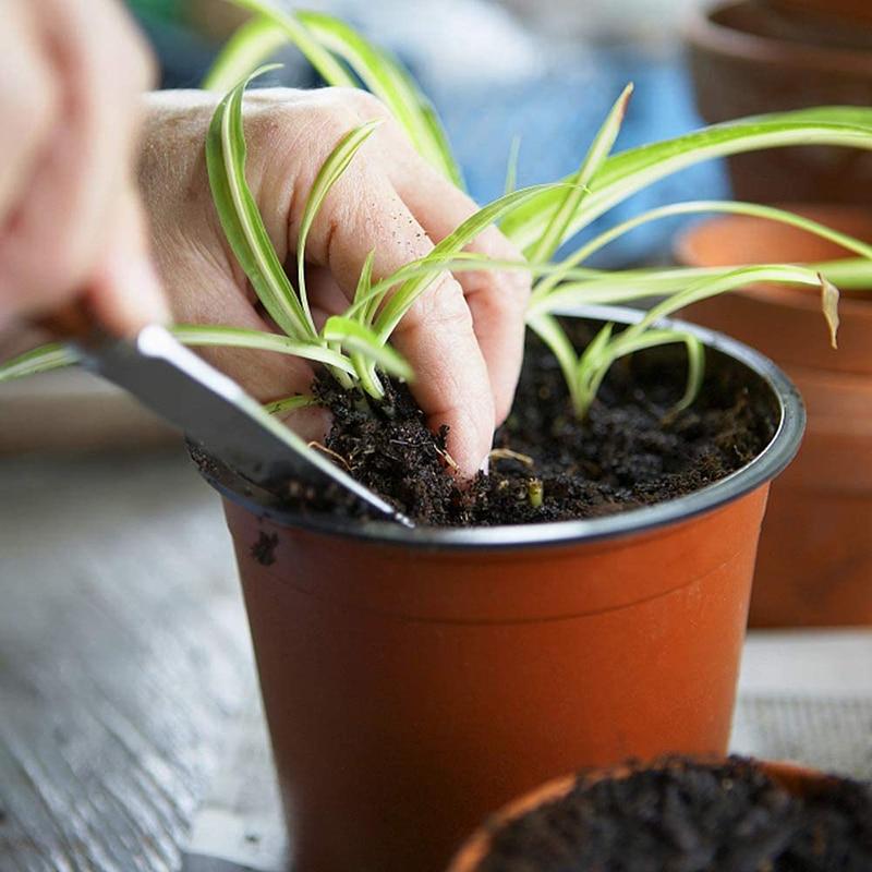 130 Pcs 10cm Plastic Plants Nursery Seed Starting Pots for Succulents Seedlings Cuttings Transplanting Home Garden Flower Decor 3
