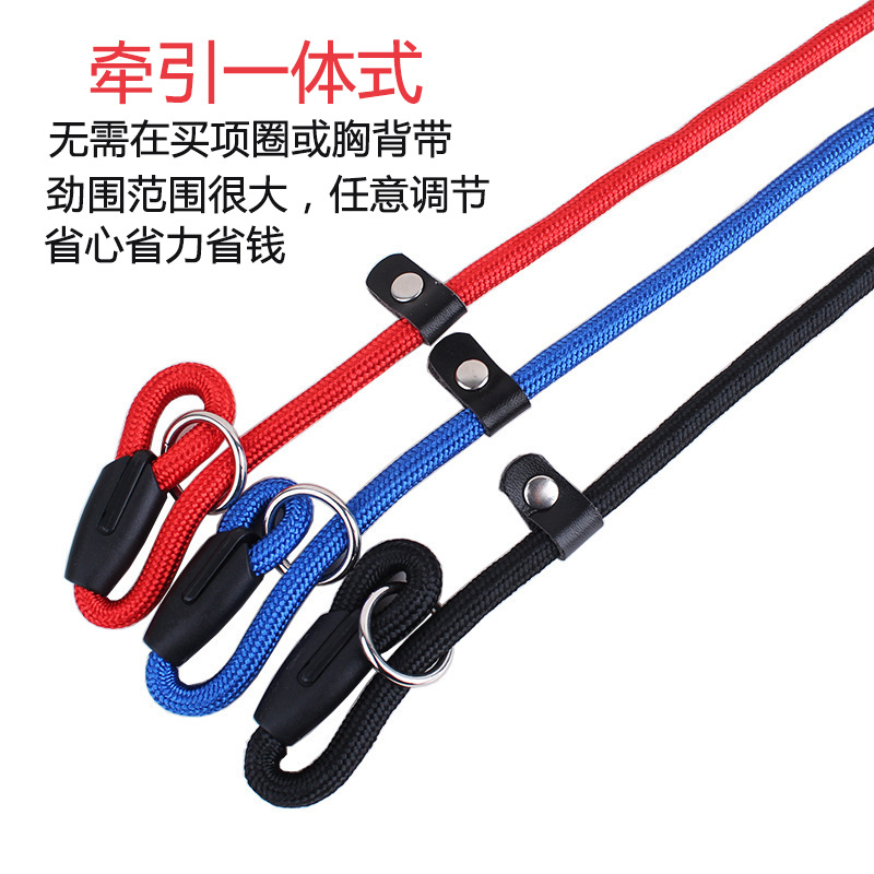 Dog Supplies Dog Leash Golden Retriever Anti-Bite Small Dogs Teddy Hand Holding Rope One-piece Dog P Pendant Training Rope