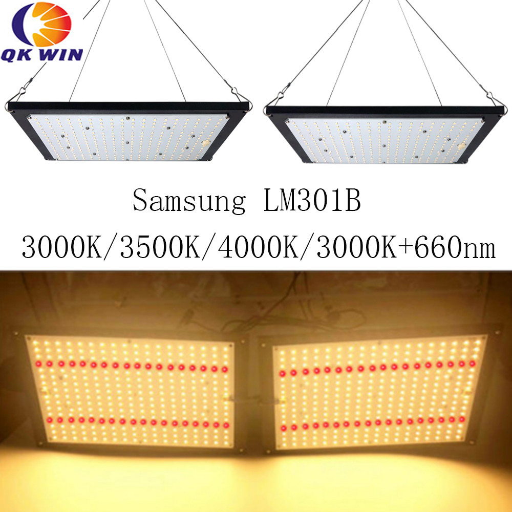 Germany Dropshipping Quantum Board Samsung LM301B 240W Full Spectrum Grow Light LED Meanwell Driver For Plants Veg Blooming