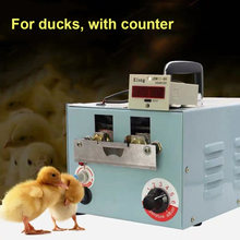 Poultry beak cutting machine 9dq 4 automatic extraction device
