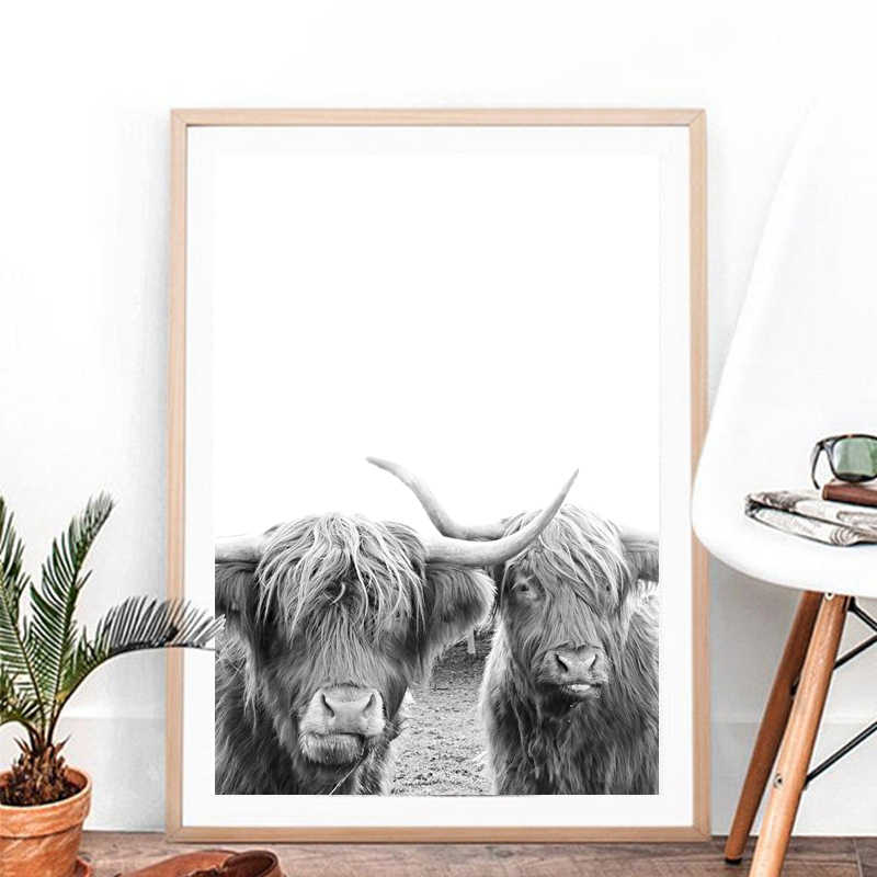 Vertical Color Photograph for Rustic Home Decor or Nursery. Black and White Scottish Highland Cow Print