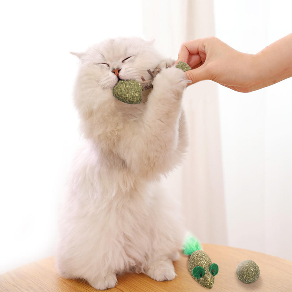 Pet Cat Toys Edible Catnip Ball Safety Healthy Cat Mint Chasing Game Toy Products Clean Teeth Protect The Stomach For Cats