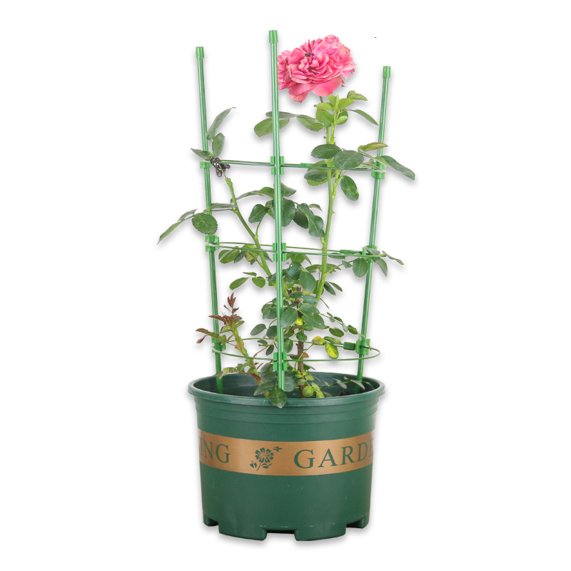 Climbing Vine Bracket Botany Climb Arbor Chinese Rose Clematis Lotus To Climb Flowerpot Bracket Tow Support Frame  Flower Rack