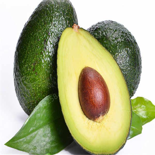 1 قطعة الأفوكادو بونساي الأخضر الفاكهة لذيذ Persea أمريكانا مطحنة الكمثرى بونساي سهلة تنمو الفاكهة بونساي للمنزل نباتات للحديقة