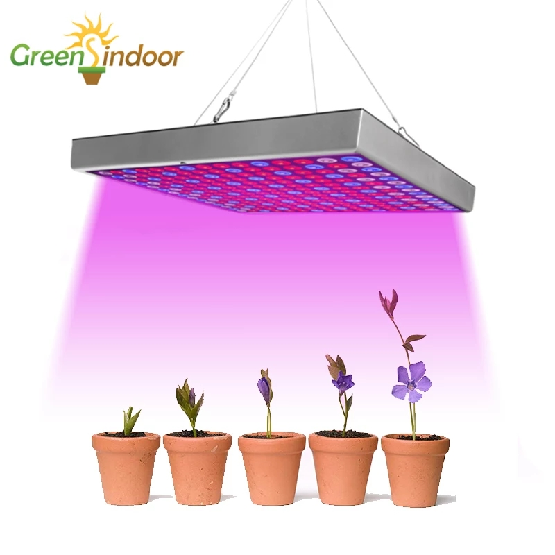 Grow Tent Led Grow Light Full Spectrum Phyto Lamp For Plants Seedlings Germination Growth Lamp With Gift Thermometer Hygrometer