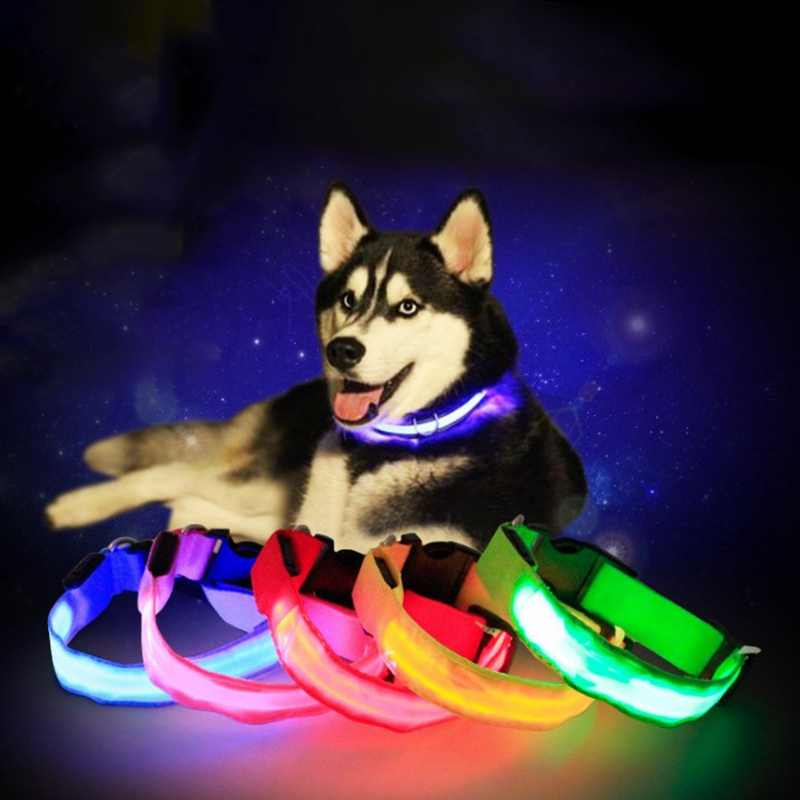 Collare di Cane LED Lampeggiante In Scuro Collare Dell'animale Domestico Luminoso di Notte per La Sicurezza Del Collo Del Cane Cinghia Cani Light Up Collari Forniture Per Animali Da Compagnia