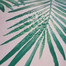 1 м/3 м/6 м кожуру и палкой wall Бумага съемный зеленого белого