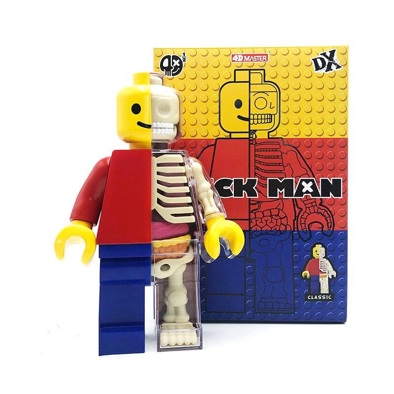 Gran 4d ladrillo hombre perspectiva humana transparente esqueleto anatómico modelo de hueso rompecabezas ensamblado juguete médico