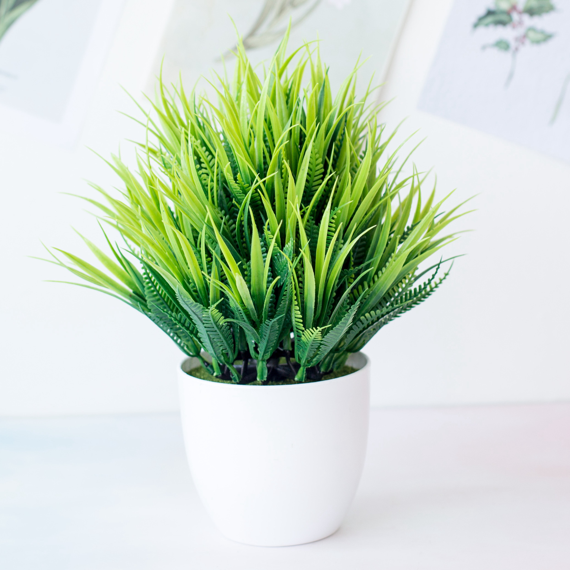 plantas real antimosquitos Caléndula 29