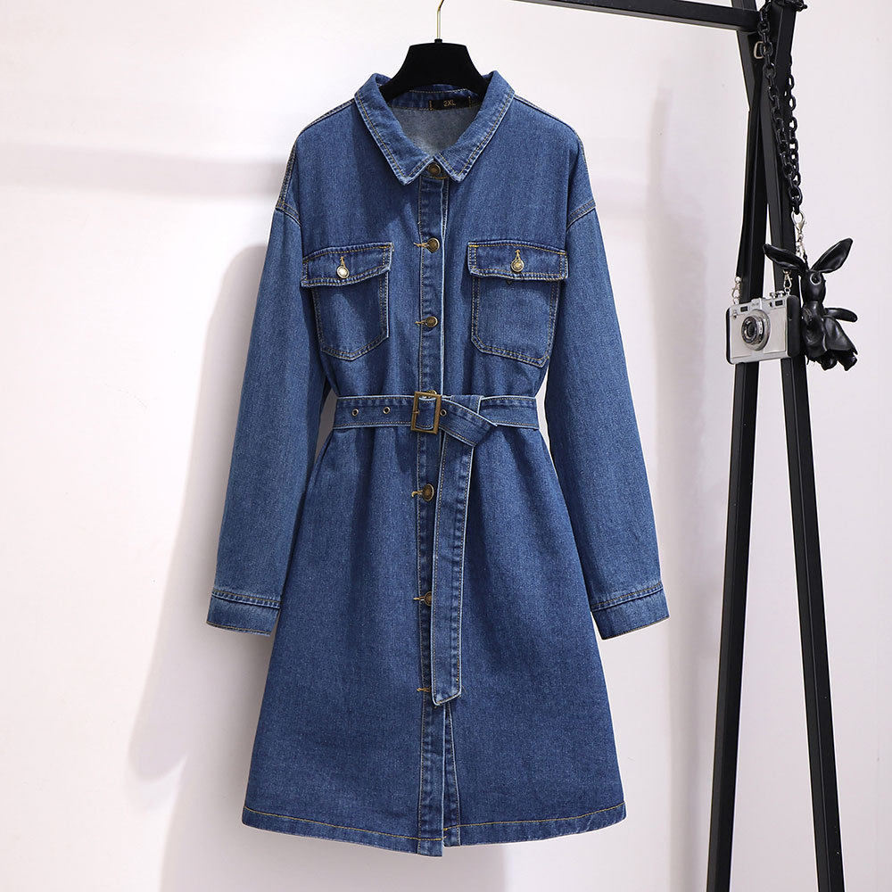 300 Ultra-Large Size Dress Fat Mm2019 Autumn Korean-style Mid-length Loose-Fit A- Line Skirt Long Sleeve Computer Cable Lock