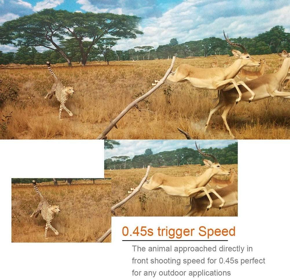 H8ec7ed21e23d46afb33a099934c7b55e5 - 16MP 1080P Mini Trail Photo-traps IP66 Hunting Camera Game Trail Camera Outdoor Wildlife Scout Guard Wildcamera with PIR Sensor