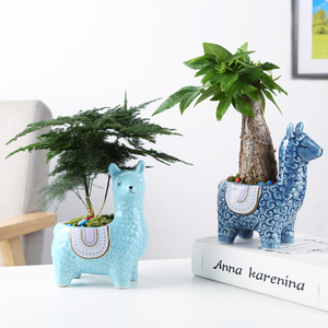 Image 3 - Cartoon Cute Alpaca Succulent Flower Pot Desktop Placed Potted Container Decoration Gift Balcony Plant Ceramic Creative