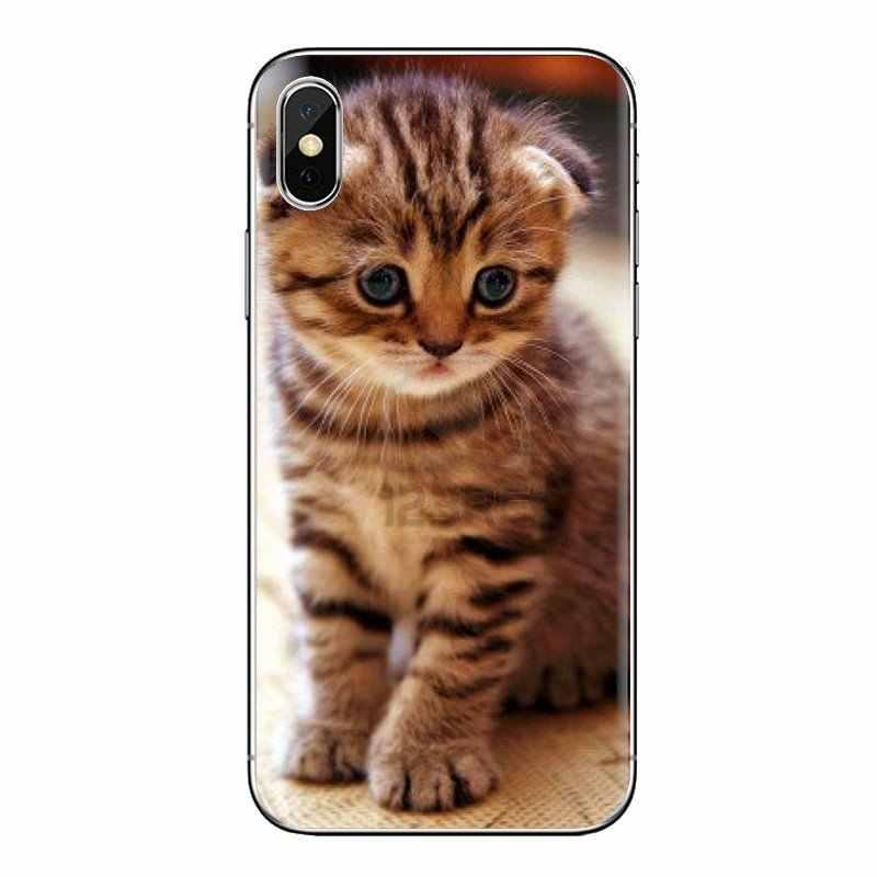Huawei 社メイト名誉 4C 5C 5 × 6 × 7 7A 7C 8 9 10 8C 8 × 20 lite プロソフト透明感のある肌カバースコットランド猫 Felis catus スコットランド
