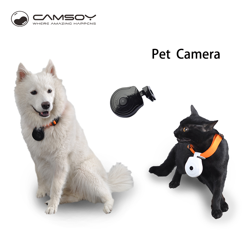 CAMSOY 720P Mini Camera Dog Cat Pet Anti-lost With LCD Screen Video Camera Recorder Pet Collar Accessoriesder mini Camcorder image