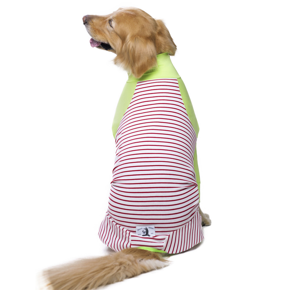 Striped Large dog clothes (3)
