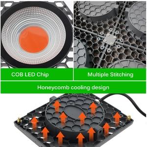 Image 4 - Led Grow Light 500W Volledige Spectrum Hoge Lichtopbrengst 50W Cob Phyto Lampen Voor Indoor Plant Zaailing Groeien en Bloem