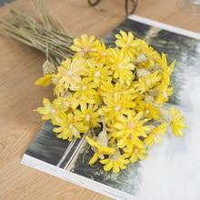 Bouquet de marguerites séchées, 5/10 pièces, orchidées naturelles, plantes sèches, accessoires de décoration pour la maison, accessoires photo, mariage, noël