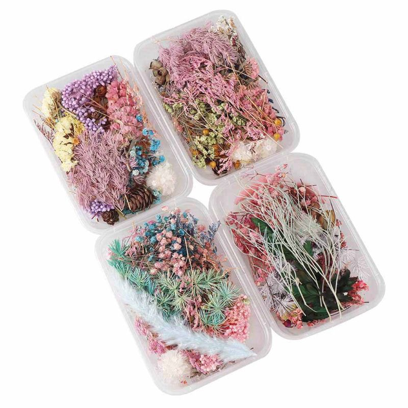 1 Box Real Pressed Flower Leaf Dried Daisy Flower Resin Flower Dry Beauty Nail Art Decals Epoxy Mold Fillings Jewelry Making