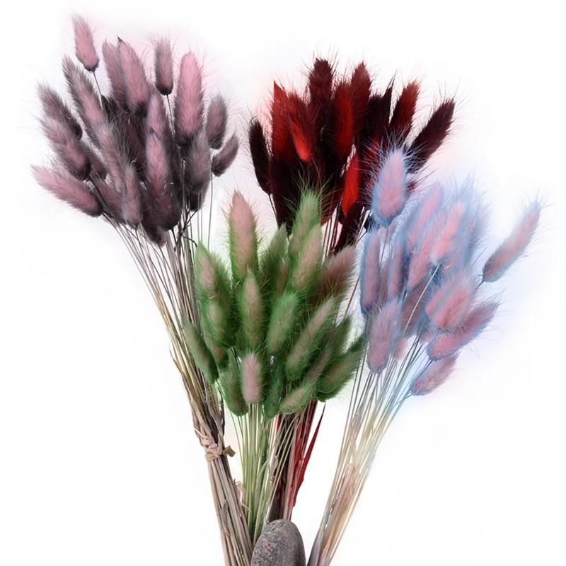 30 шт., Натуральные сушеные цветы с градиентом, для украшения дома, свадьбы, Рождества, кролика, хвоста, травы