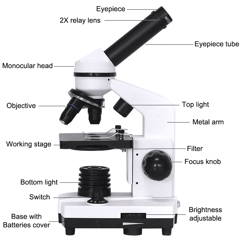 Science Biological Microscope Experiments Smartphone 40X 1600X Student Illuminated Microscope With Adapter Monocular Present LED
