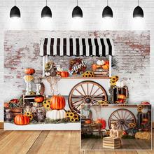 Backdrop Photographers Pumpkin-Sunflower Studio Children for Birthday Autumn
