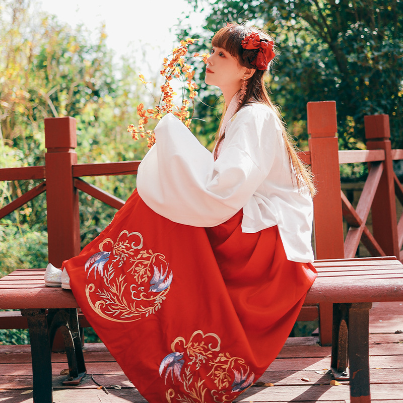 Embroidery Hanfu Women Dance Costumes Fairy Dress Ladies Festival Rave Outfit Singers Ancient Performance Clothing 2 Pcs DC3392