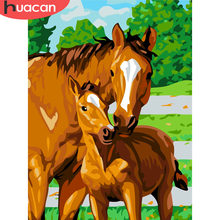 HUACAN DIY Pictures By Numbers Horse Animals HandPainted Kits Drawing Canvas Oil Painting By Numbers Home Decor Gift(China)