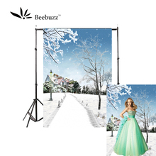 Beebuzz photo backdrop beautiful snow scene in winter backgroung snowy paths and houses photophone