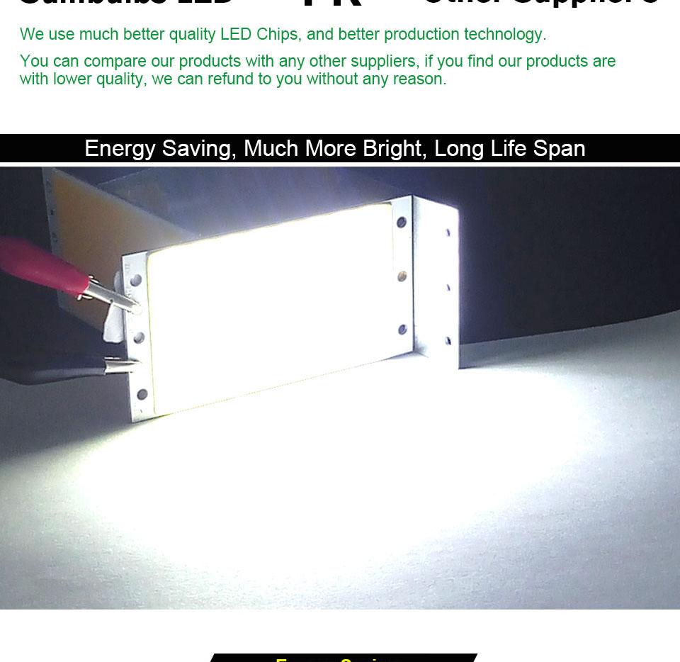DC12V COB LED Strip Light Source 5W 10W 20W 50W 200W 300W LED Bulb White Blue Red Flip Chip COB Lamp DIY House Car Lighting 12V (20)