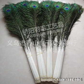 100pcs/lot Large Peacock Feather 70-80cm Craft  Feather Trim Headdress Carnival  Center Pieces Accessories