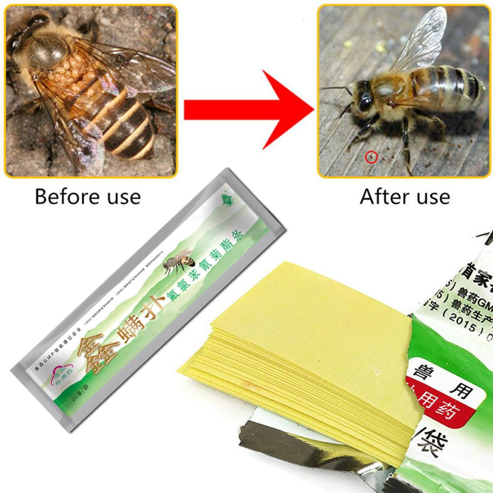 20Pcs/Pack 20 Fluvalinate Strips Anti Insect Pest Controller Instant Mite Killer Miticide Bee Medicine Mite Strip