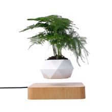 Levitating Air Bonsai Pot Magnetic Levitation Flower Pot Plant Aerial Creative Ornaments For Decoration