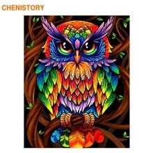 CHENISTORY 60x75cm Cornice di Colore Del Gufo Animali Pittura di Diy Dai Numeri Kit Moderna di Arte Della Parete Immagine di Vernice Acrilica da I Numeri Per Il Regalo
