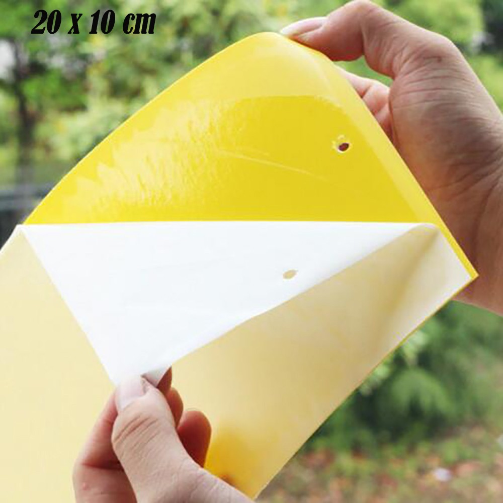 50pcs Glue Trap Catcher Sticky Boards Yellow Sticky Traps Eliminate Flies Insect Bug Garden Glue Paper Board Plant Flycatchers(China)