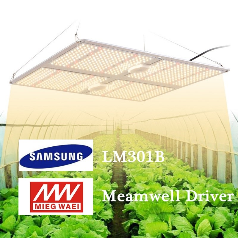 Full spectrum LED Grow Light 110W 220W 450W <font><b>Samsung</b></font> <font><b>LM301B</b></font> Quantum <font><b>Board</b></font> IP65 Waterproof Indoor hydroponic system Growing Lamp image
