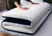 Bedroom Bed Memory foam mattress portable Latex mattress 5cm 8cm thicken bedroom furniture mattress dormitory Home Mattress B546