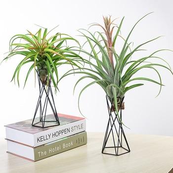 Soporte para clavel de aire para jardín soporte geométrico de Tillandsia de hierro para adornos del hogar recipientes para plantas bastidores para flores decoración del hogar