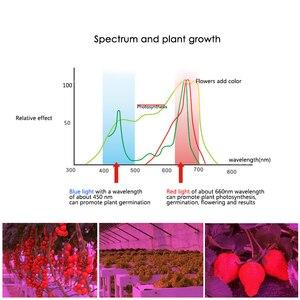 Image 5 - Led Grow Light Volledige Spectrum 10W 30W 50W 80W E27 Led Groeiende Lamp Voor Indoor Hydrocultuur bloemen Planten Led Groei Lamp
