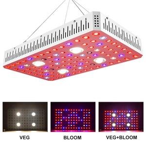 Image 2 - مفتاح مزدوج عكس الضوء الشمس 1000 واط 2000 واط 3000 واط COB رقاقة مزدوجة LED تنمو ضوء الطيف الكامل 410 730nm للنباتات الداخلية والزهور
