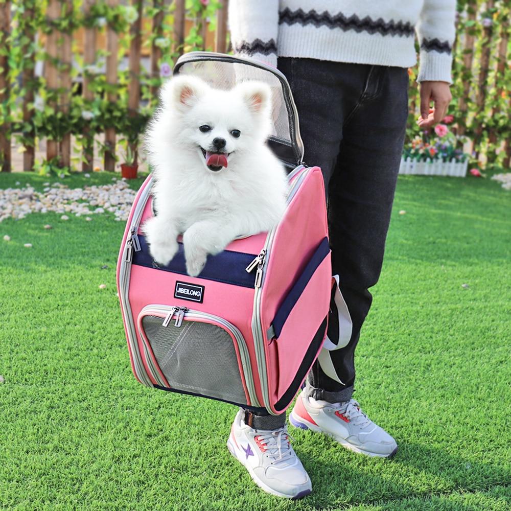 Kedi sırt çantası