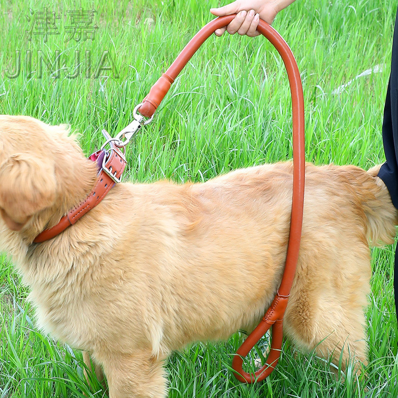 Pet Hand Holding Rope Traction Belt Set Dog Rope Dog Chain Large Dog Pet Supplies