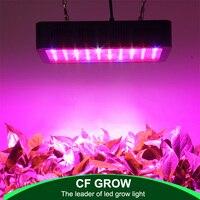 전체 스펙트럼 led 성장 빛 300 w 600 w 1000 w 성장 램프 실내 수경 온실 led 식물 모든 무대 성장 조명